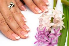 Professional manicure Royaltyfria Bilder