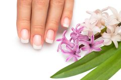 Professional manicure with spring flowers Royalty Free Stock Photos