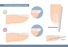 Free Professional Manicure Tutorial. The Perfect Nail Shape. How To File Nails The Right Way. Manicure Mistakes. Vector Royalty Free Stock Images - 147125199