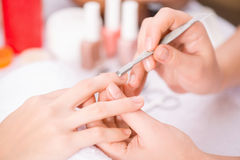 Professional manicurist  making manicure. Stay beautiful. Close up of cuticle pusher in hands of professional manicurist holding it and making manicure Royalty Free Stock Photo