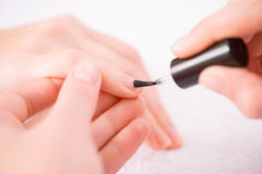 Professional manicurist making manicure. Women paradise. Close up of hands of professional manicurist holding nail brush and painting nails  while making Royalty Free Stock Photography