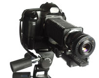 Professional micro-photography rig Royalty Free Stock Image
