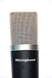 Professional Microphone. A black professional microphone isolated on white Royalty Free Stock Photos