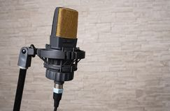 Professional microphone of last generation royalty free stock photo