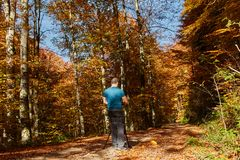 Professional photographer shooting autumn colors. Professional nature photographer with camera on tripod shooting colorful autumn forest Royalty Free Stock Photography