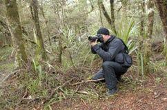 Professional nature, wildlife and travel photographer Stock Image