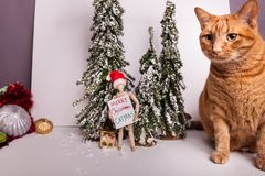 Orange tabby cat wintery Christmas scene jointed manikin holding Merry Christmas scene. Cute orange tabby cat wintery Christmas scene Woden jointed manikin stock images