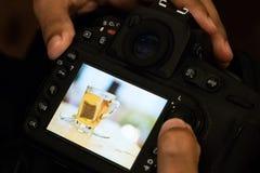 Professional photographer take photo and check image tea bag photo on back  camera monitor.scan and check photo behind camera. Monitor view image stock image