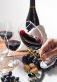 Professional red wine tasting event with high quality wine glass. Es and wine accessories close up Royalty Free Stock Photo