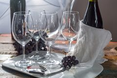 Professional red wine tasting event with high quality wine glass. Es and wine accessories close up Stock Image