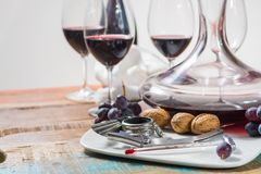 Professional red wine tasting event with high quality wine glass. Es and wine accessories close up Royalty Free Stock Photos