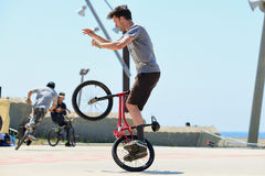A professional rider at the BMX (Bicycle motocross) Flatland competition Royalty Free Stock Images