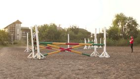 Professional rider on a horse jumps over a barrier. Competitive rider training jumping over obstacles at sunset. Mare jumps over two barriers in training at stock video footage