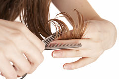 Professional scissors. Hair stylist cutting wet hair with professional scissors, beauty salon Royalty Free Stock Photo