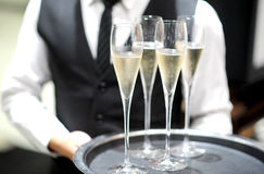 Professional serving champagne Royalty Free Stock Photo