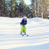Professional skier boy skiing in the forest Royalty Free Stock Photo