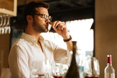 Professional skilled sommelier checking the bottle cork. Is it natural. Professional skilled sommelier smelling a wine bottle cork while checking how natural it royalty free stock images