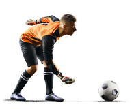 Professional soccer goalkeeper in action on white background. Professional goalkeeper in action on white background royalty free stock photography