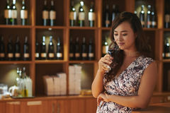 Professional sommelier. Chinese female sommelier smelling wine before drinking Royalty Free Stock Image
