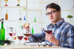 The professional sommelier tasting red wine. Professional sommelier tasting red wine Stock Images
