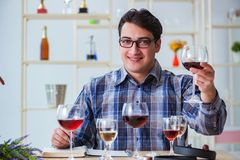 The professional sommelier tasting red wine Royalty Free Stock Image