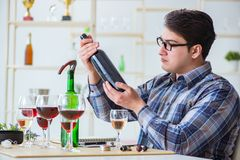 The professional sommelier tasting red wine. Professional sommelier tasting red wine Royalty Free Stock Photography