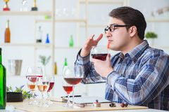 The professional sommelier tasting red wine. Professional sommelier tasting red wine Stock Photography