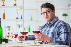 The professional sommelier tasting red wine Royalty Free Stock Photos