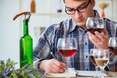 The professional sommelier tasting red wine Royalty Free Stock Images