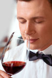 Professional sommelier tasting wine Stock Images