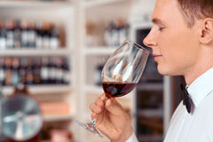Professional sommelier tasting wine Royalty Free Stock Images