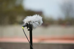 Professional sport microphone. On a football field with windshield for live sport broadcasting Royalty Free Stock Image