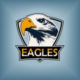 Professional sports logo, emblem template with the image of the hawk, eagle, falcon Stock Images