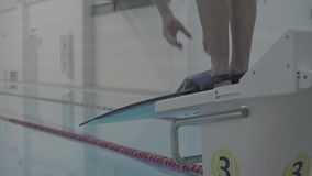 Professional sporty male swimmer jumping off into the swimming pool with flippers from starting block at indoor pool. Sporty professional male swimmer jumping stock video