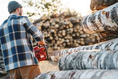 Professional strong lumberman wearing plaid shirt use chainsaw on sawmill. Strong logger worker sawing a big tree royalty free stock images