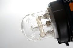 Professional studio flash bulb Royalty Free Stock Image
