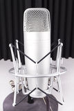Professional studio microphone on white background Royalty Free Stock Photography