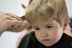 Professional styling. Cute boys hairstyle. Little child given haircut. Small child in hairdressing salon. Little boy. With blond hair at hairdresser. Hair salon royalty free stock images