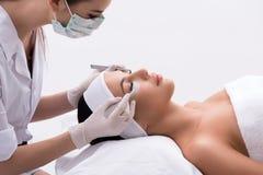 Professional stylist lengthening female lashes Royalty Free Stock Photo