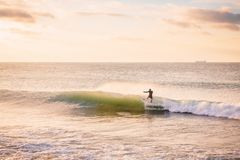 Professional surfer ride on perfect wave in ocean. Landscape with waves and sunrise colors. Professional surfer ride on perfect wave in ocean. Landscape with Stock Photography