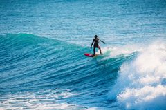 Professional surfer on wave. Winter surfing in Kamchatka royalty free stock images