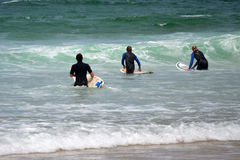 Professional Surfers. Three professional surfers on the way to catch the waves royalty free stock photo