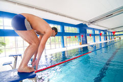Professional Swimmer getting ready to jump. In the swimming pool for pratice Royalty Free Stock Photo