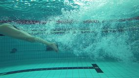 Professional swimming in pool, Sports woman plunges underwater while float training at Poolside. Before race stock video footage