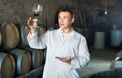 Professional taster posing with glass of wine. Friendly professional taster posing with glass of wine in winery cellar Stock Image