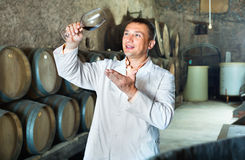 Professional taster posing with glass of wine. Glad  friendly professional taster posing with glass of wine in winery cellar Royalty Free Stock Images