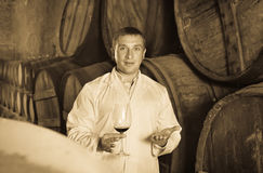 Professional taster posing with glass of wine. Glad positive smiling professional taster posing with glass of wine in winery cellar Royalty Free Stock Photography