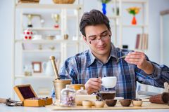 The professional tea expert trying new brews Stock Image