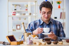 The professional tea expert trying new brews Royalty Free Stock Images