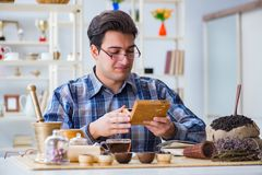 The professional tea expert trying new brews Stock Photography